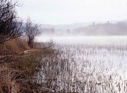 Hålsjön Foto Håkan Svensson